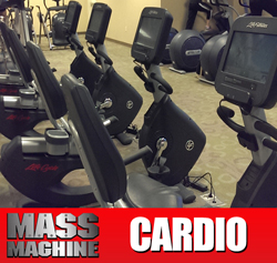 cardio2 Mass Machine Training Program