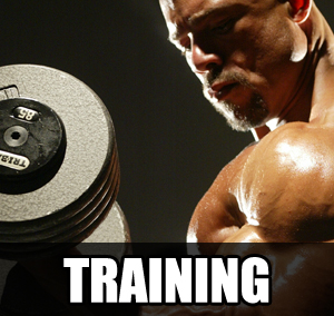 training2 Step By Step Guide To Bodybuilding Mastery   The Mindset And Actions Of A Champion